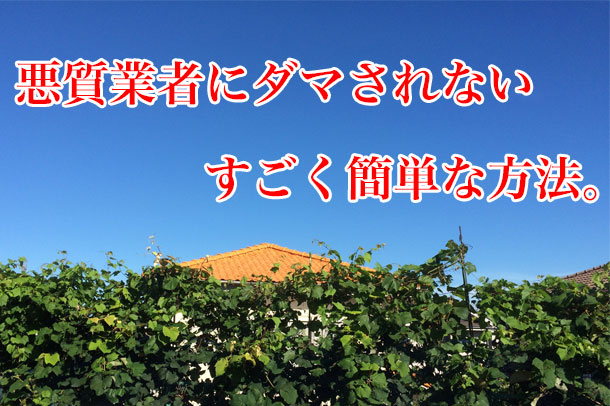 20140825_just-look_01