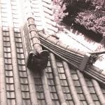 """教えて!屋根屋さん。第2回「""""良い屋根""""と""""悪い屋根""""の違いとは?」"""