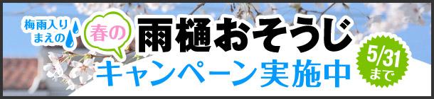 春の雨樋おそうじキャンペーン!5月31日まで
