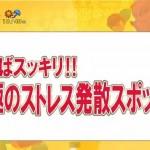 ストレス発散に瓦割り 東京MX【バラいろダンディ】で紹介されました。