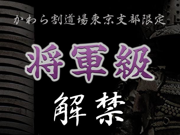 【東京支部限定】かわら割道場裏メニュー[将軍級]今までに無い野生的なスリルが味わえます。30枚全て割り切ると豪華賞品プレゼント!【挑戦者求む】