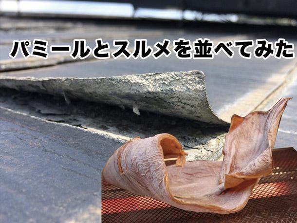 パミールの葺き替え工事で判明!屋根材は雨が漏らなきゃいいの?(動画あり)