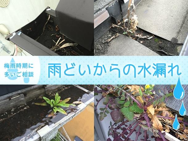 【雨の季節に多いご相談】雨樋からの水漏れについて