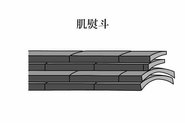 「肌熨斗 はだのし」難しい屋根の専門用語をやさしく解説。今日の屋根用語!第321日目
