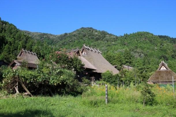日本らしい和風の家や飲食店にするには? 簡単に和風にするポイントを教えて?