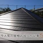 【疑問解決】実は屋根のこれが知りたかった!今人気の屋根お役立ち記事5選【2016年12月現在】