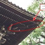 「二軒 ふたのき」難しい屋根の専門用語をやさしく解説。今日の屋根用語!第434日目