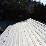 金属屋根材の寿命とは? 金属屋根材の特徴を教えて!