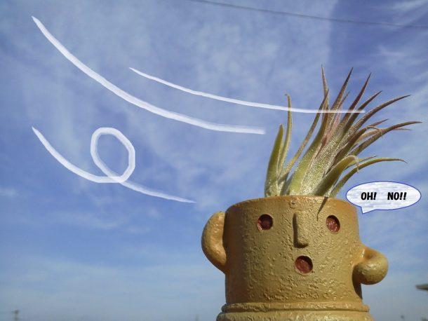 強風があった後は「悪質な屋根の訪問詐欺」にお気をつけください!