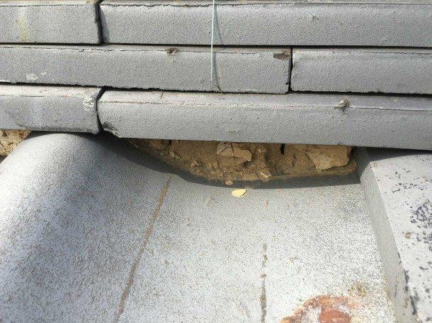 業者からの指摘!雨どいにたくさんの土が。棟交換を勧められたけれど