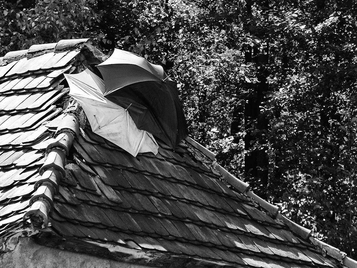 屋根の機能は家の雨漏りを防ぐこと