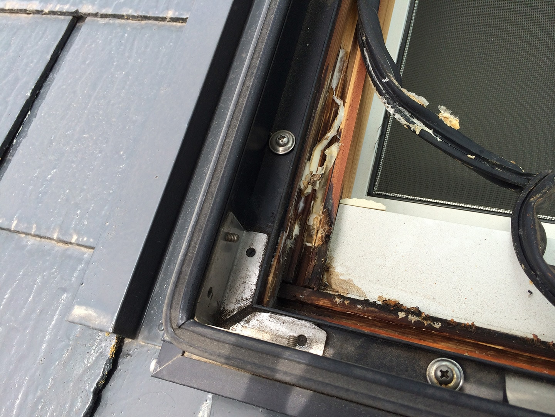 【千葉県松戸市】天窓のガラスパッキン劣化による雨漏りの修理工事の事例4