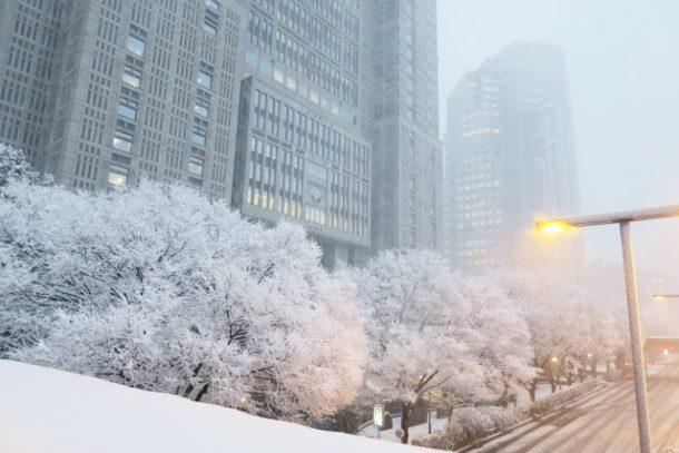 関東に降った雪