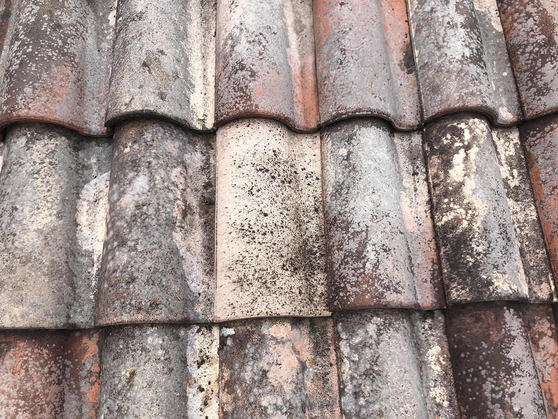 【東京都八王子市】瓦屋根の割れ修理、雨どい掃除の工事事例 瓦の差し替え