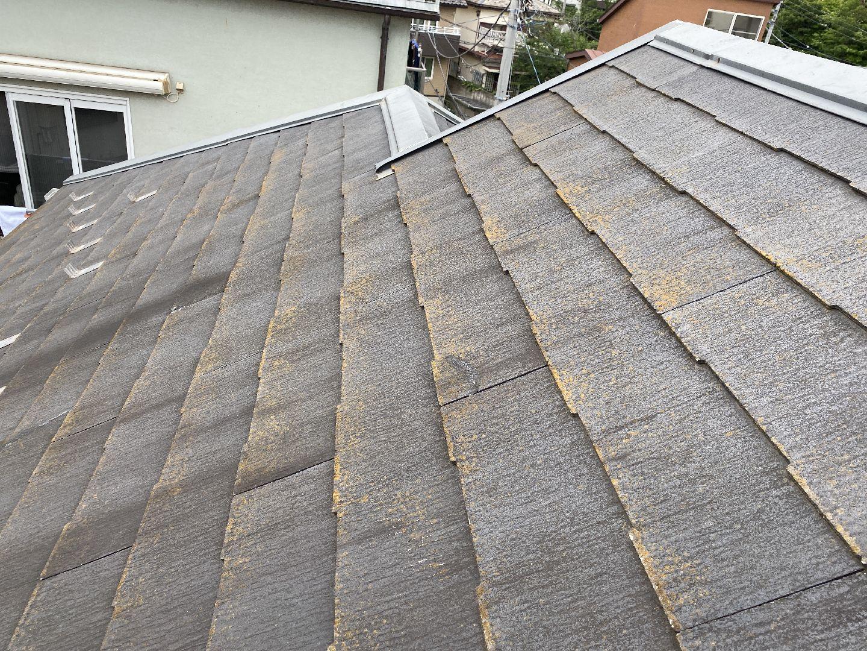 苔がある屋根材