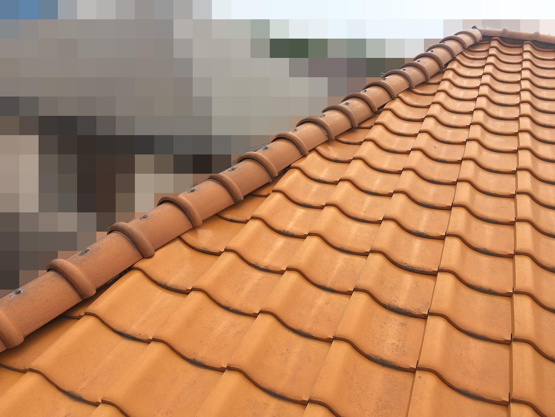 【千葉県船橋市】瓦屋根の雨漏り修理で、棟の一部の取り直し工事の事例 雨漏り 屋根上状況