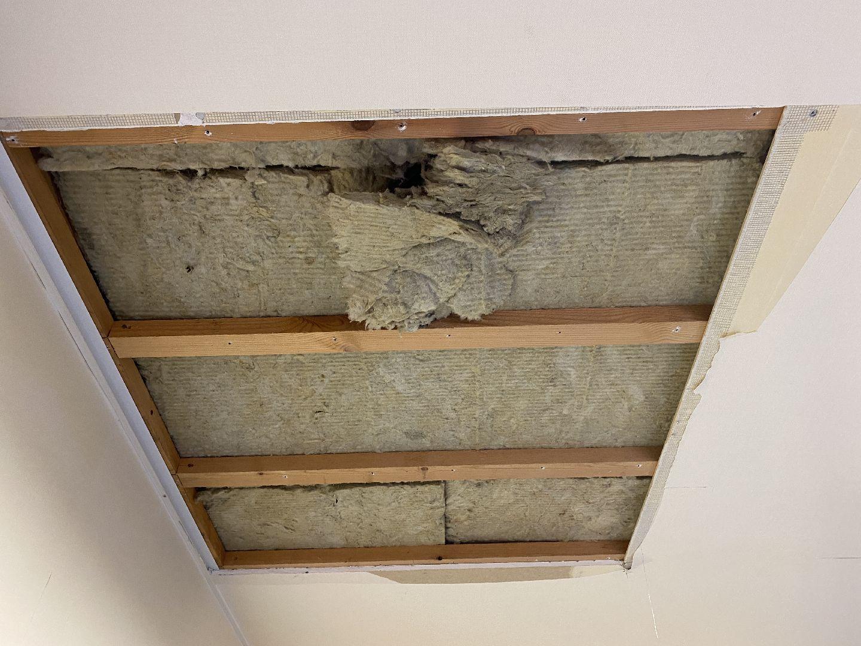 天井板(ボード)を剥がした状態 リフォーム